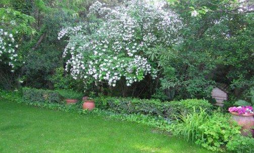 Entretien jardin Bollène